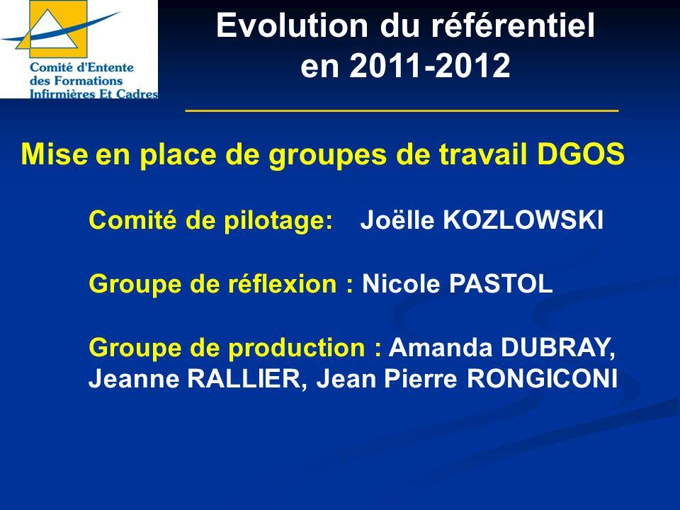 Mise en place de groupes de travail DGOS Comité de pilotage: Joëlle KOZLOWSKI Groupe de réflexion : Nicole PASTOL Groupe de production : Amanda DUBRAY