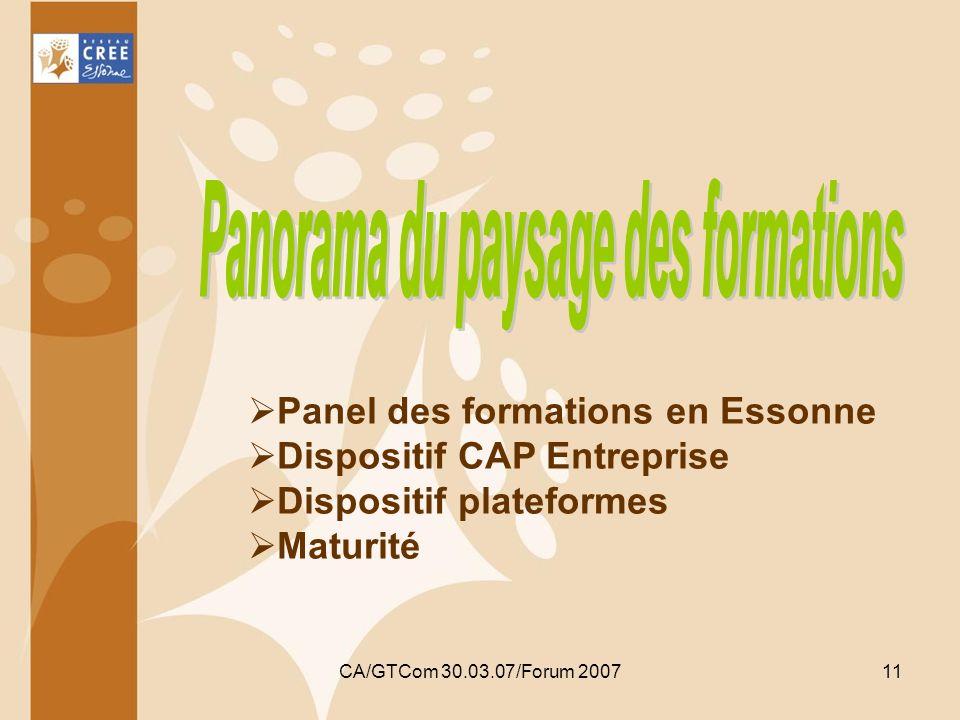 CA/GTCom 30.03.07/Forum 200711 Panel des formations en Essonne Dispositif CAP Entreprise Dispositif plateformes Maturité