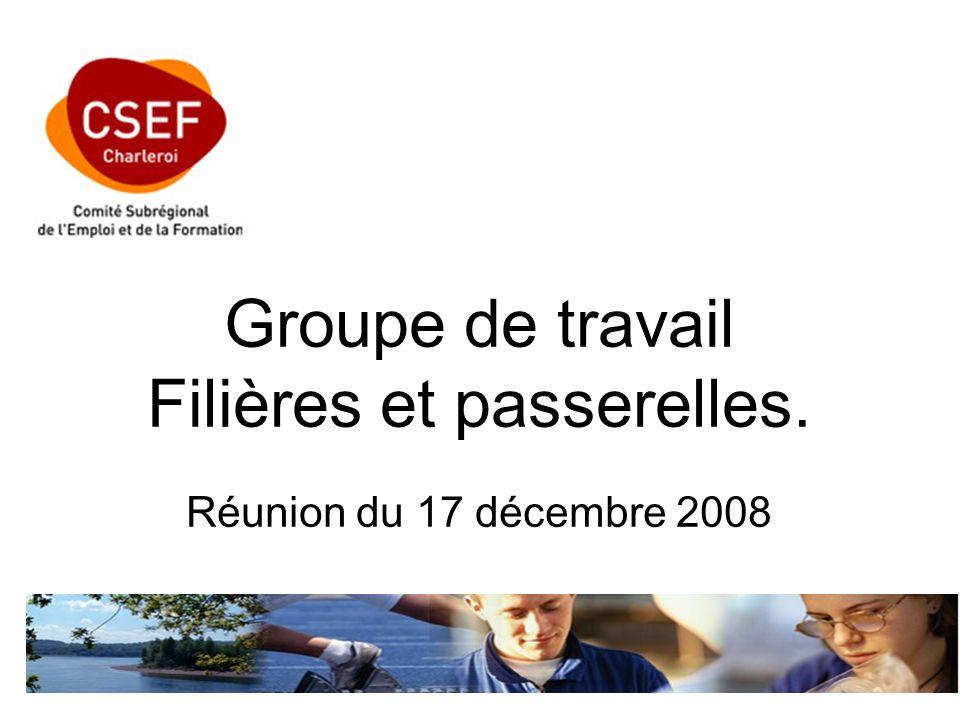 Groupe de travail Filières et passerelles. Réunion du 17 décembre 2008