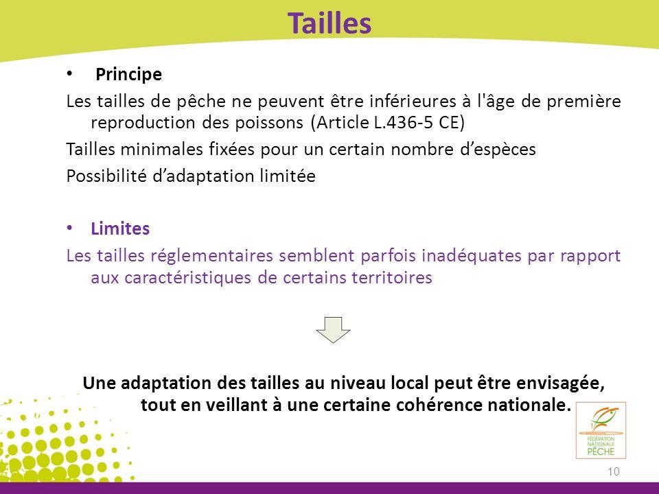 Tailles Principe Les tailles de pêche ne peuvent être inférieures à l'âge de première reproduction des poissons (Article L.436-5 CE) Tailles minimales