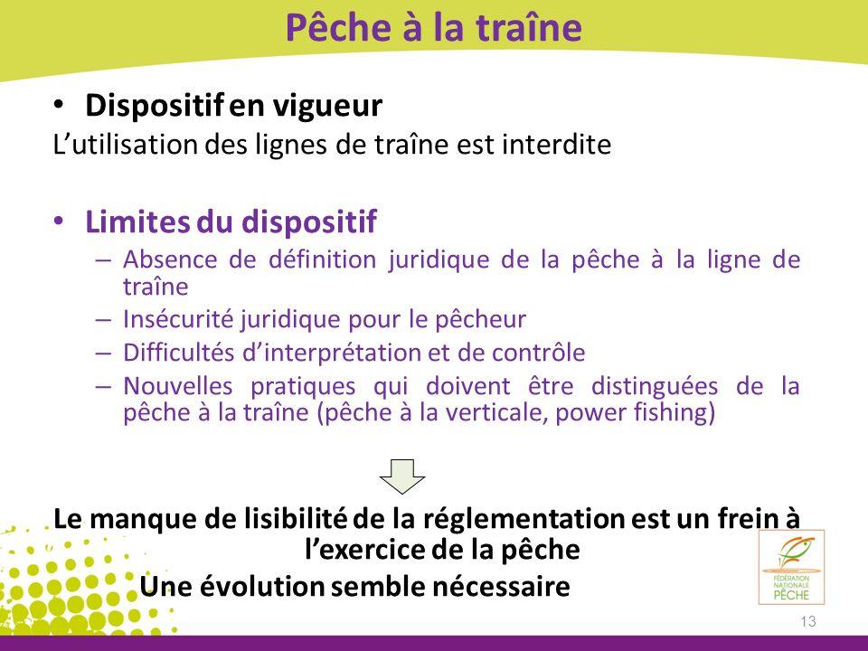 Pêche à la traîne Dispositif en vigueur Lutilisation des lignes de traîne est interdite Limites du dispositif – Absence de définition juridique de la