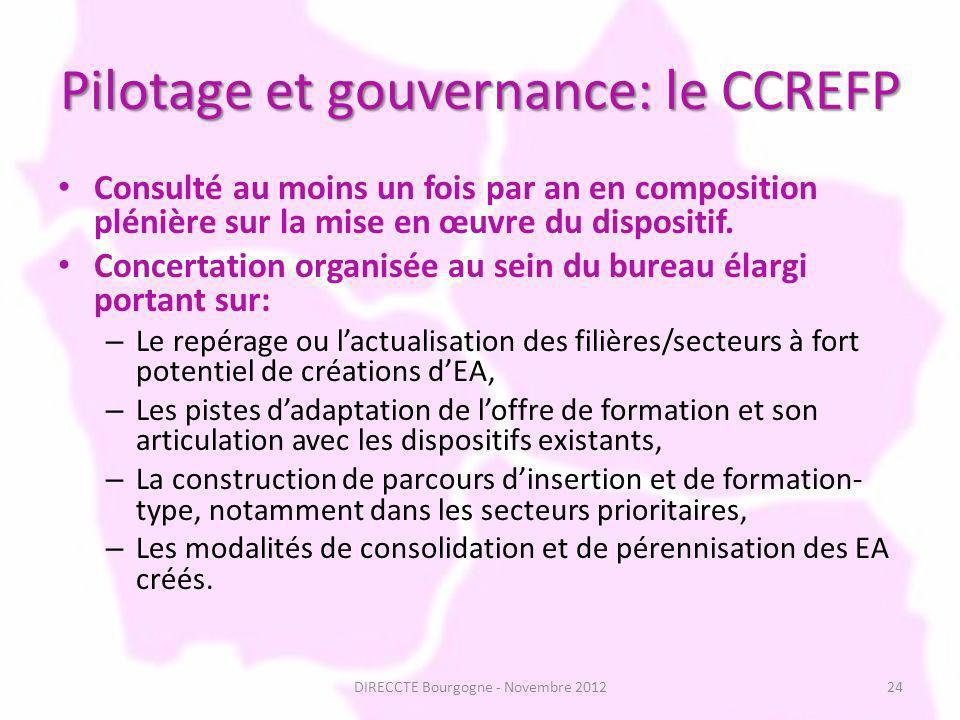 Pilotage et gouvernance: le CCREFP Consulté au moins un fois par an en composition plénière sur la mise en œuvre du dispositif.