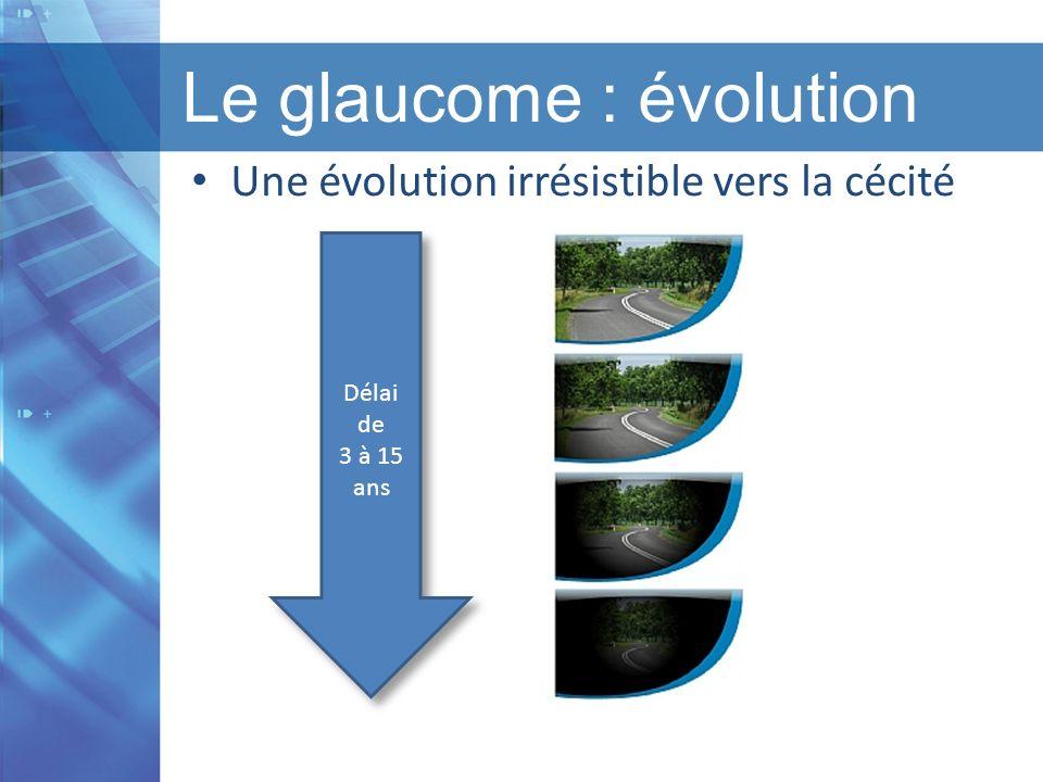 Titre de la présentation I Titre du chapitre I Version 1.1 I Date Le glaucome : évolution Une évolution irrésistible vers la cécité Délai de 3 à 15 an