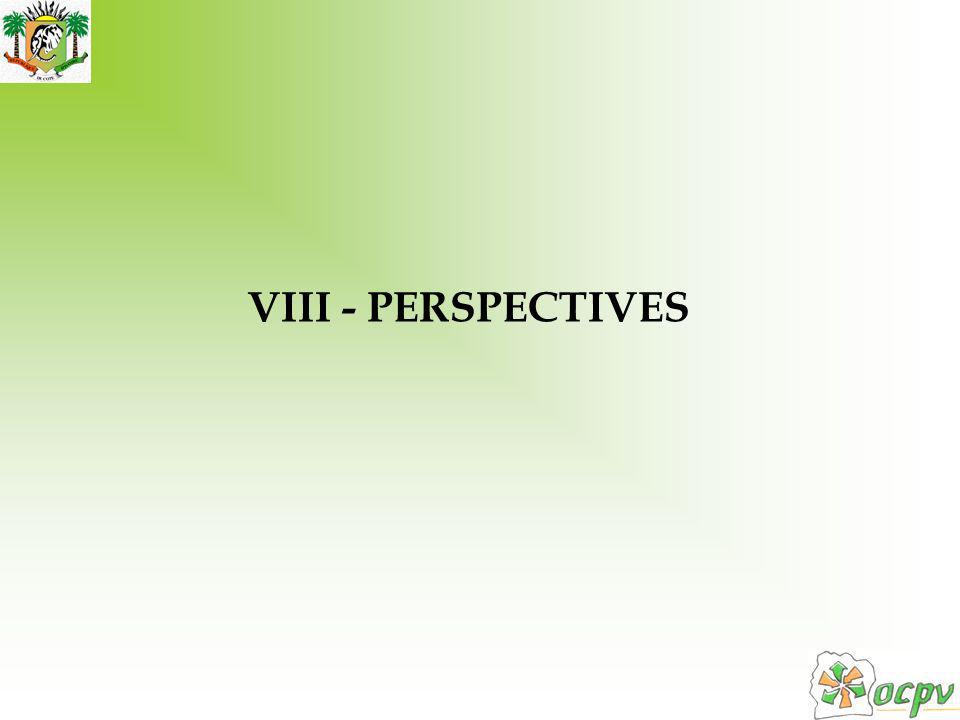 VIII - PERSPECTIVES