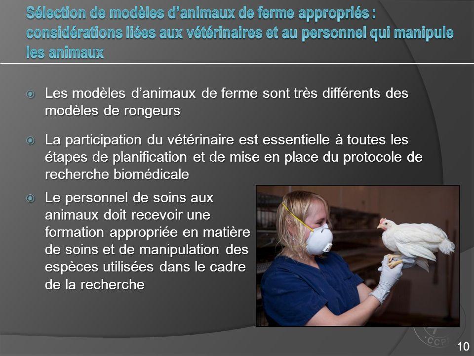 Les modèles danimaux de ferme sont très différents des modèles de rongeurs Les modèles danimaux de ferme sont très différents des modèles de rongeurs