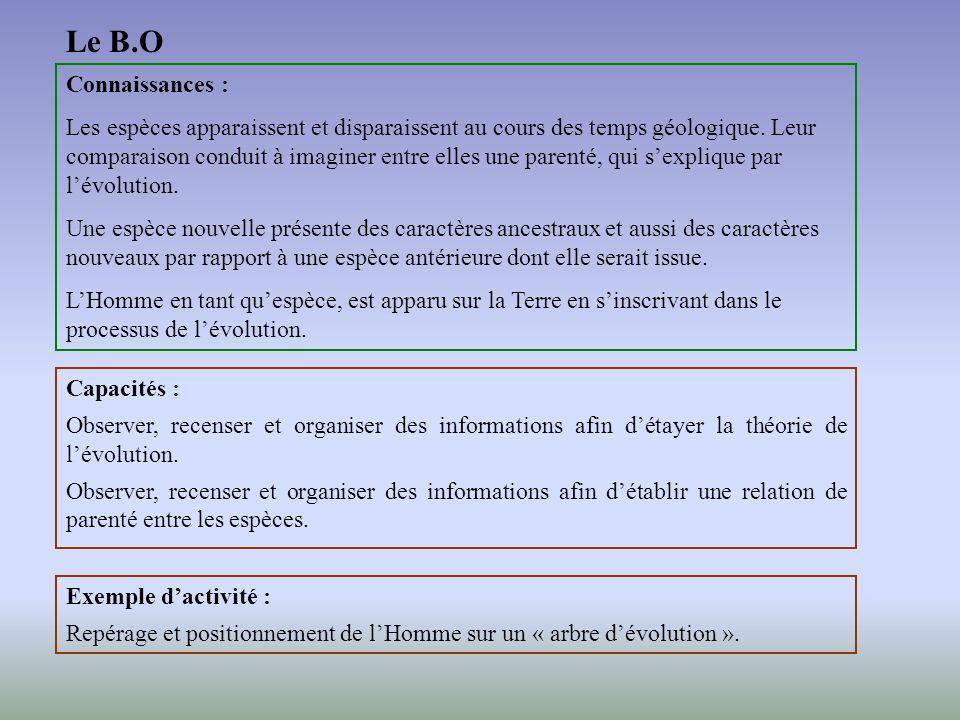 Un exemple dactivité Partie de programme : évolution des organismes vivants et histoire de la Terre Objectif : évaluer dans le cadre dune démarche din