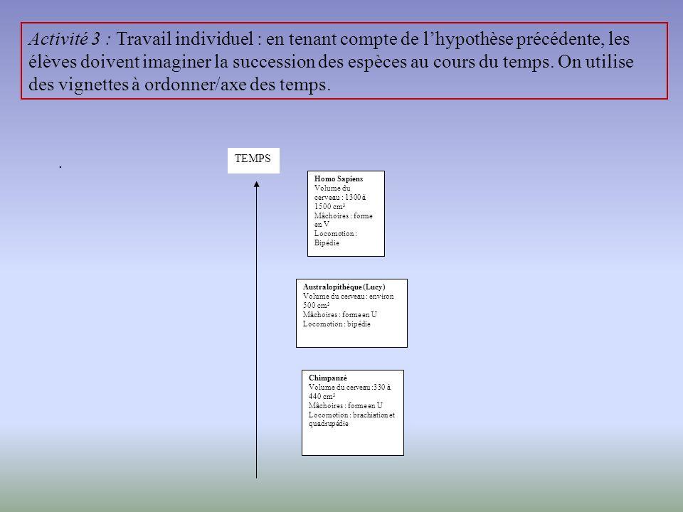 Activité 1 : prise de représentation individuelle : Expliquer par un texte et un schéma comment lhomme est arrivé sur la Terre. Présentation du dispos