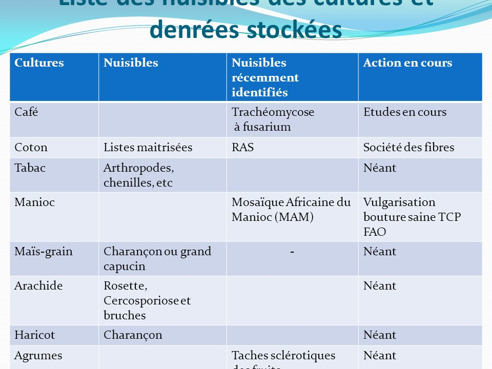 Végétaux et produits végétaux concernés (suite) Autres produits végétaux ligneux, non ligneux et les produits halieutiques Bois (export) Champignons (