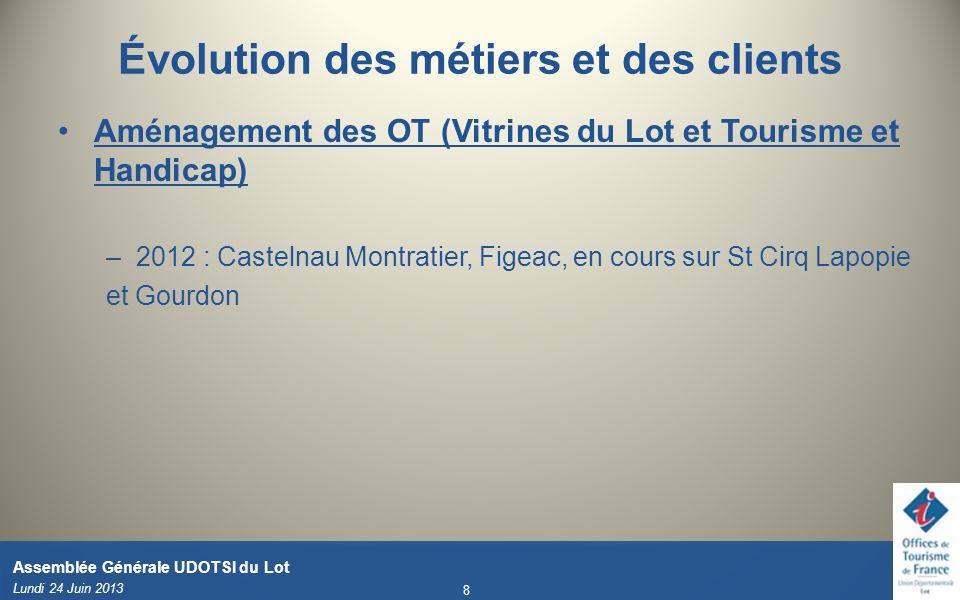 Évolution des métiers et des clients Aménagement des OT (Vitrines du Lot et Tourisme et Handicap) –2012 : Castelnau Montratier, Figeac, en cours sur S