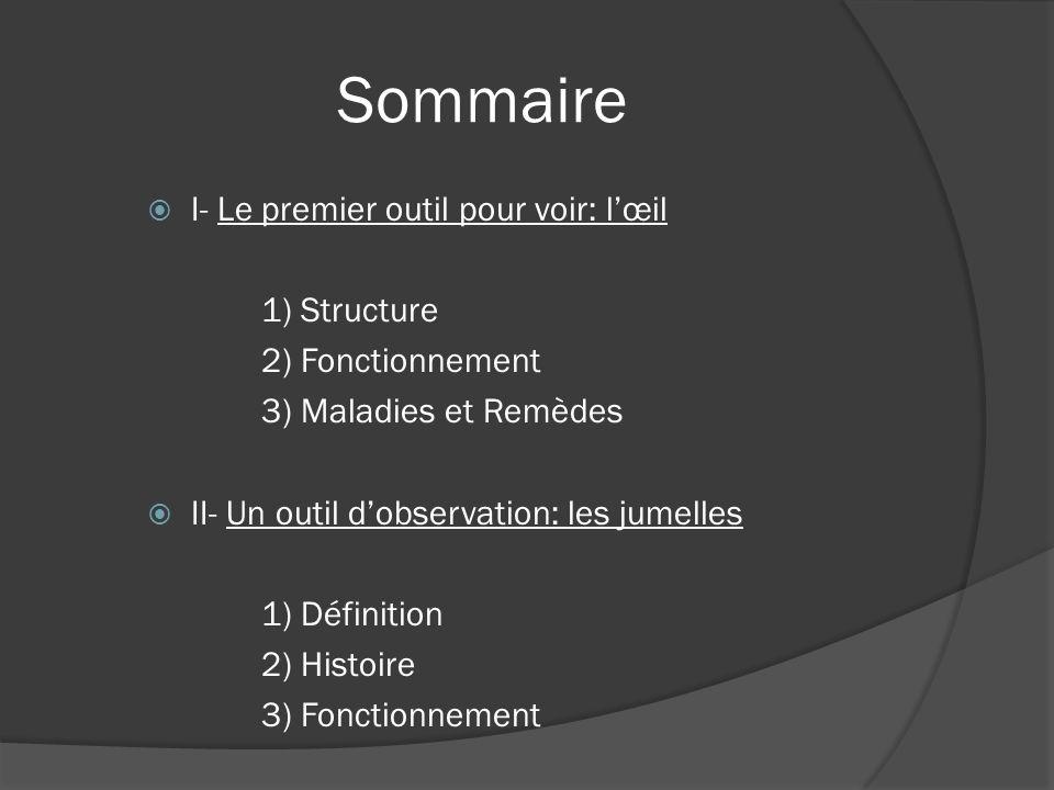 Sommaire I- Le premier outil pour voir: lœil 1) Structure 2) Fonctionnement 3) Maladies et Remèdes II- Un outil dobservation: les jumelles 1) Définiti