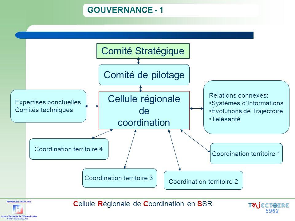 5962 Cellule Régionale de Coordination en SSR GOUVERNANCE - 1 Coordination territoire 3 Comité de pilotage Coordination territoire 4 Coordination terr
