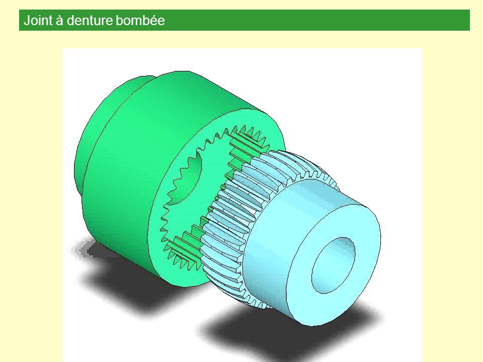 Joint à denture bombée