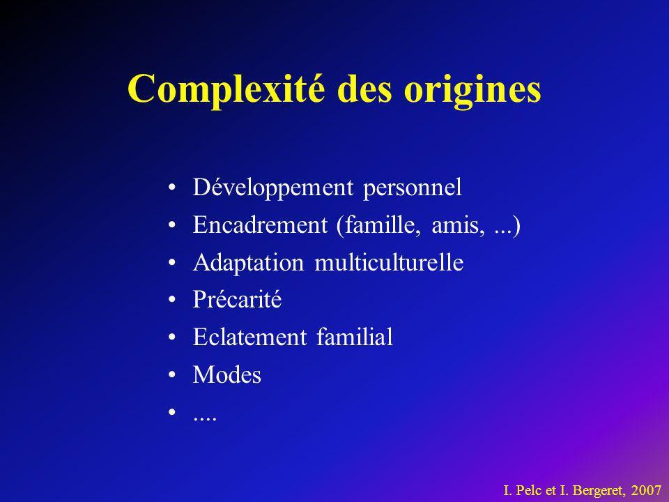 Complexité des origines Développement personnel Encadrement (famille, amis,...) Adaptation multiculturelle Précarité Eclatement familial Modes.... I.