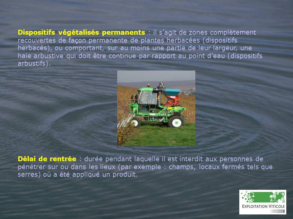 Dispositifs végétalisés permanents : il sagit de zones complètement recouvertes de façon permanente de plantes herbacées (dispositifs herbacés), ou co