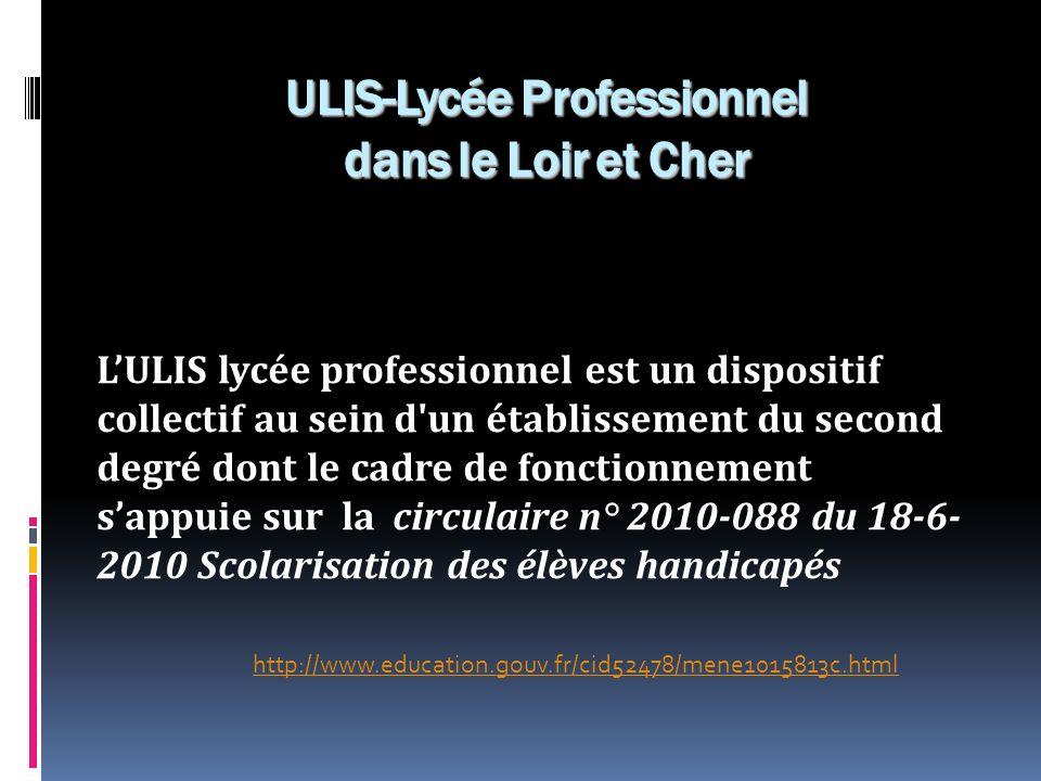 LULIS lycée professionnel est un dispositif collectif au sein d'un établissement du second degré dont le cadre de fonctionnement sappuie sur la circul