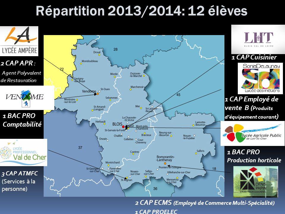 Répartition 2013/2014: 12 élèves 3 CAP ATMFC (Services à la personne) 1 CAP Cuisinier 2 CAP ECMS (Employé de Commerce Multi-Spécialité) 1 CAP PROELEC