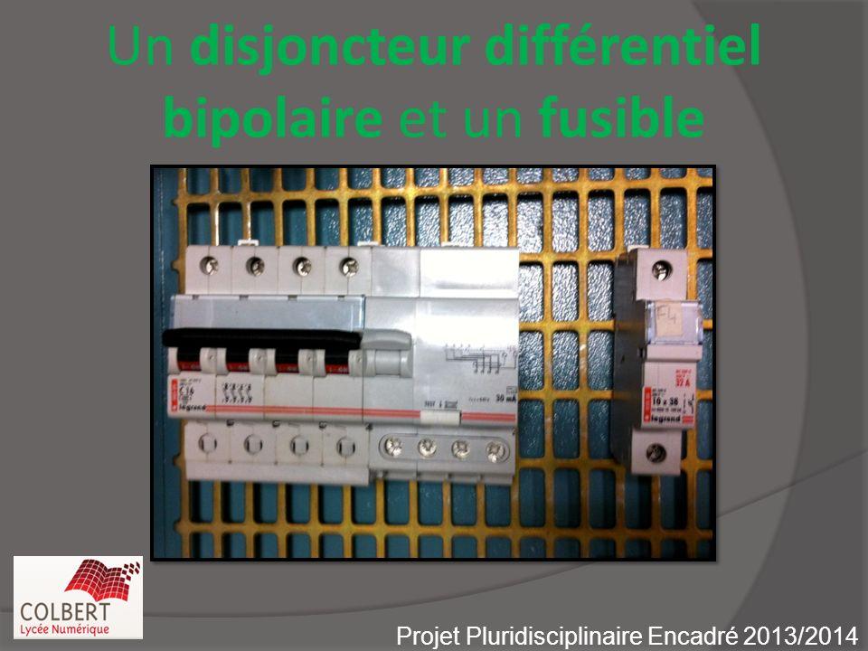 Un disjoncteur différentiel bipolaire et un fusible Projet Pluridisciplinaire Encadré 2013/2014