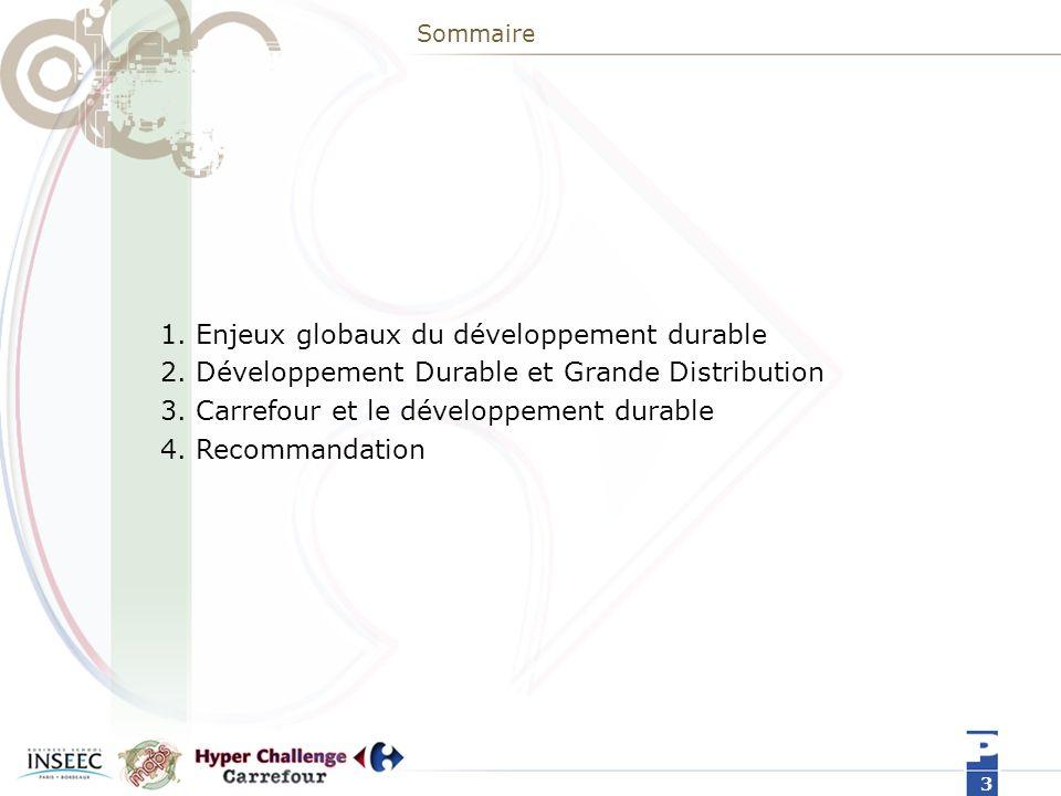 Sommaire 1.Enjeux globaux du développement durable 2.