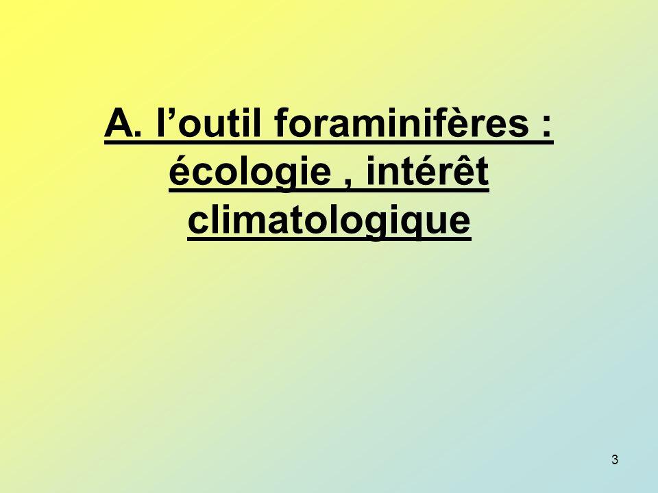 84 schéma dun Foraminifère