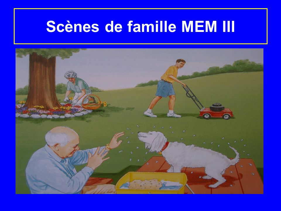 Scènes de famille MEM III