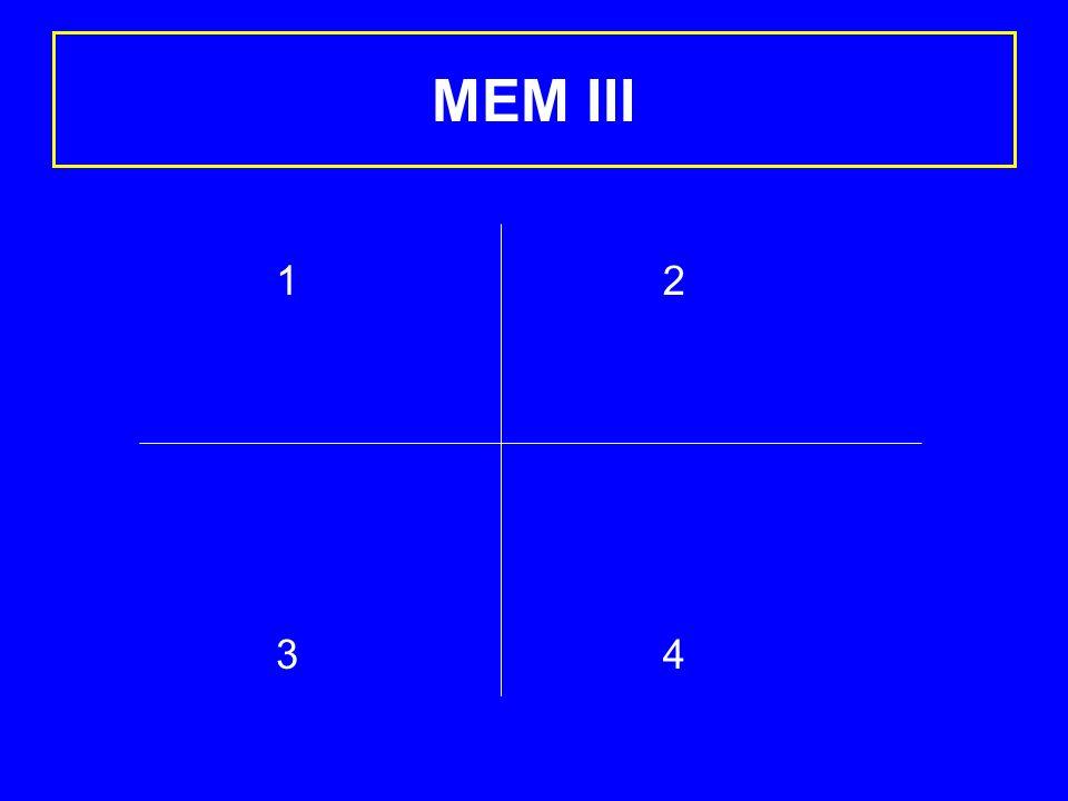 MEM III 1313 2424