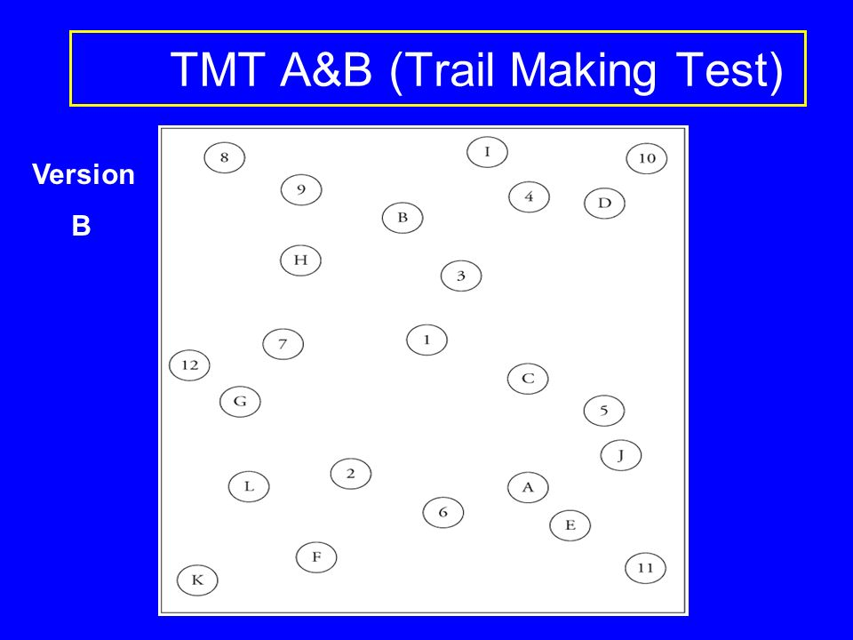 TMT A&B (Trail Making Test) Version B