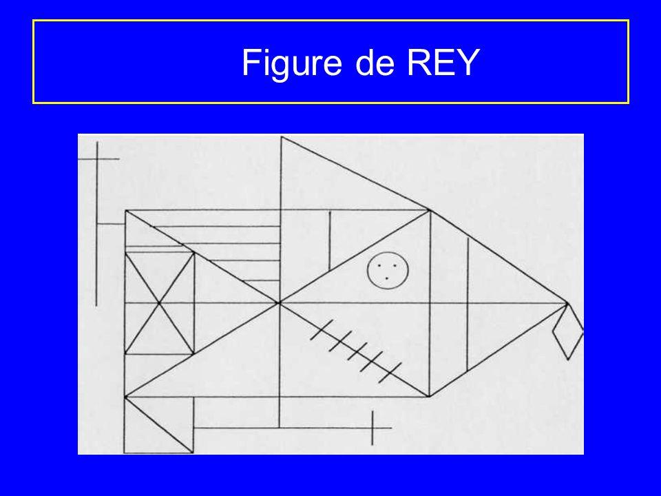 Figure de REY