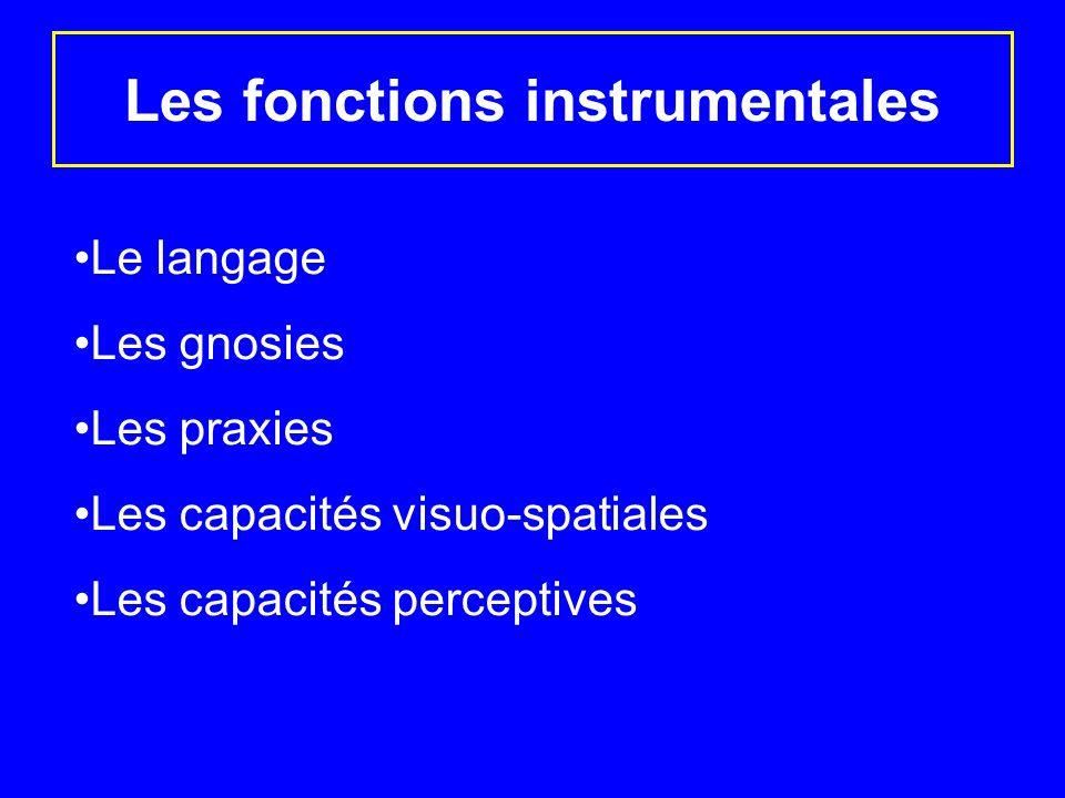 Les fonctions instrumentales Le langage Les gnosies Les praxies Les capacités visuo-spatiales Les capacités perceptives