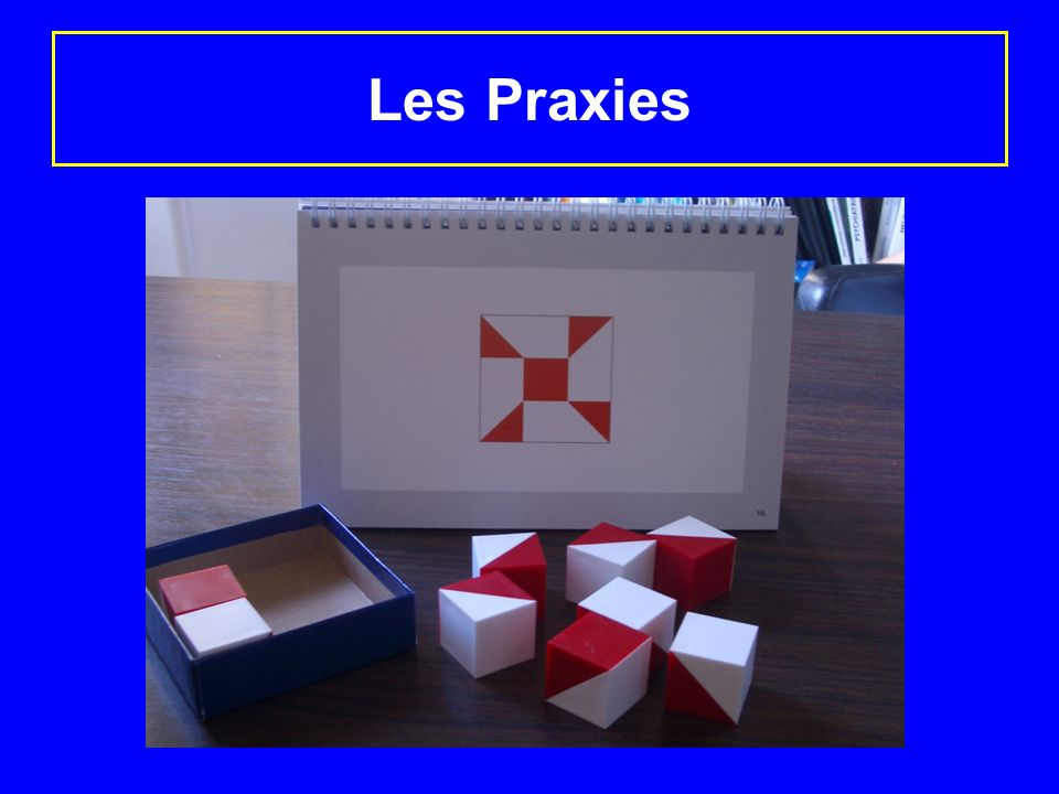 Les Praxies