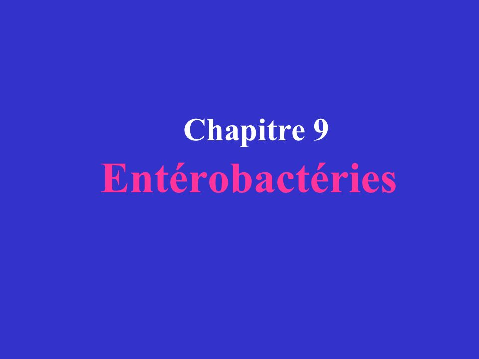 E.coli entérohémorragiques sérotype 0157:H7.