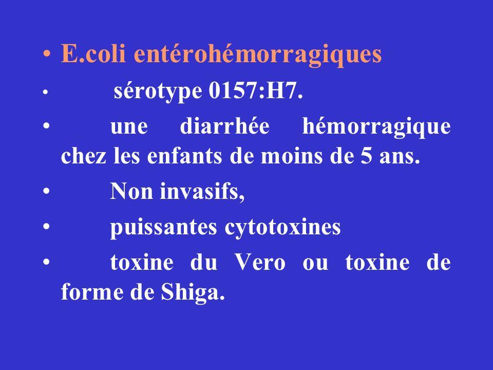E.coli entérohémorragiques sérotype 0157:H7. une diarrhée hémorragique chez les enfants de moins de 5 ans. Non invasifs, puissantes cytotoxines toxine