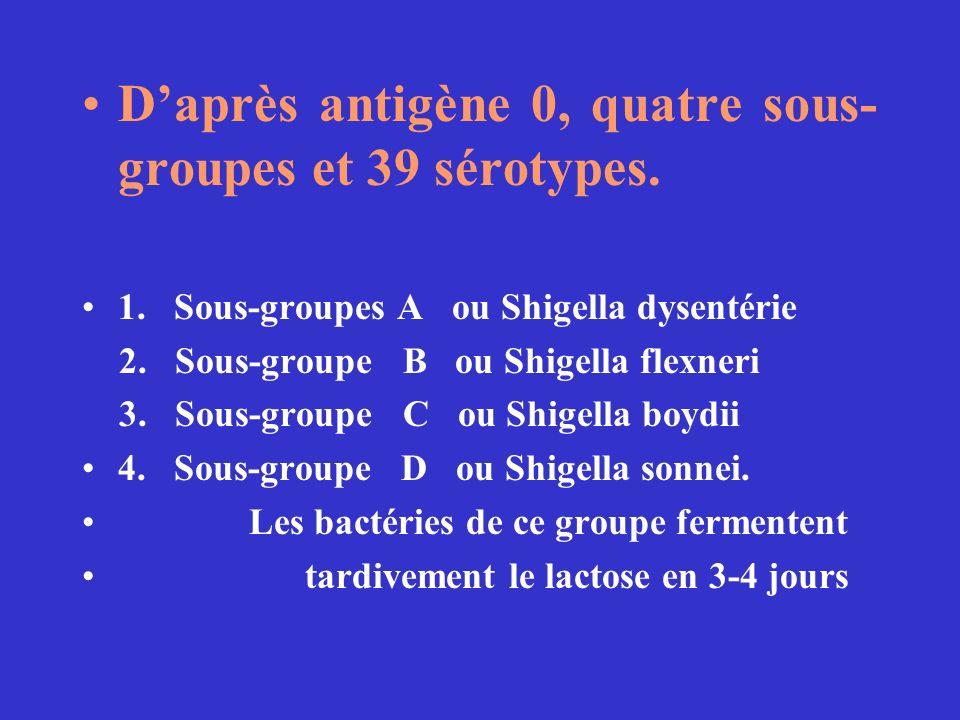 Daprès antigène 0, quatre sous- groupes et 39 sérotypes. 1. Sous-groupes A ou Shigella dysentérie 2. Sous-groupe B ou Shigella flexneri 3. Sous-groupe