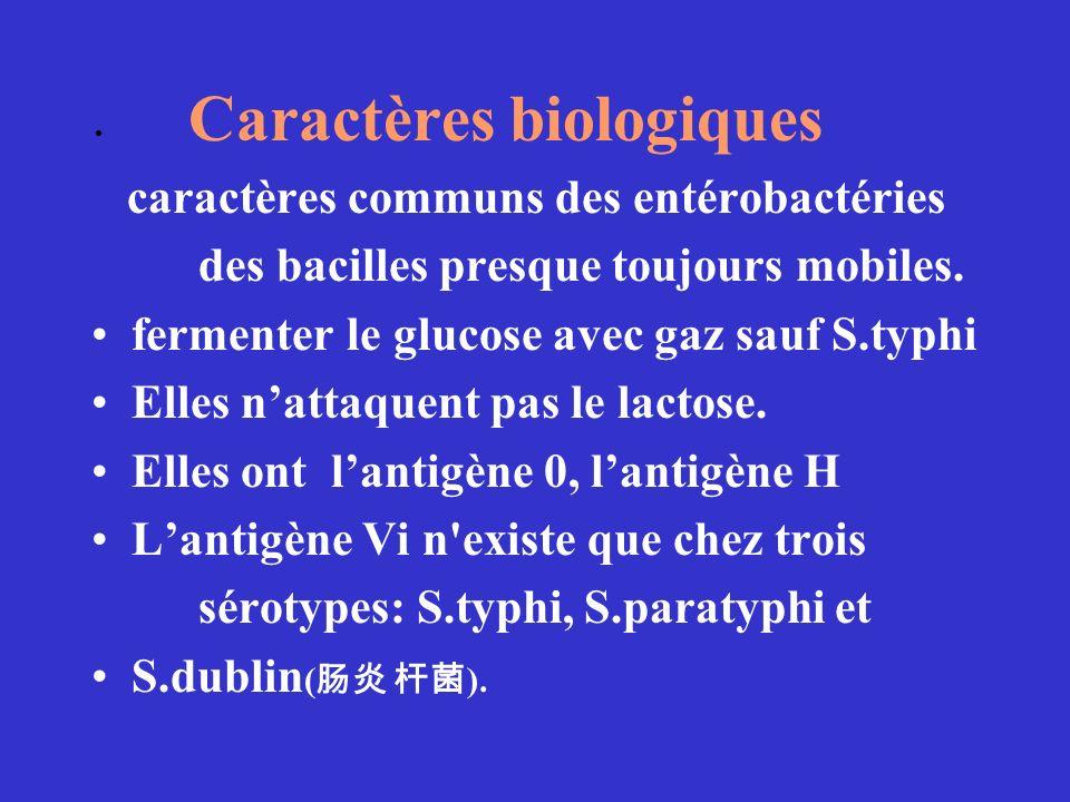 Caractères biologiques caractères communs des entérobactéries des bacilles presque toujours mobiles. fermenter le glucose avec gaz sauf S.typhi Elles