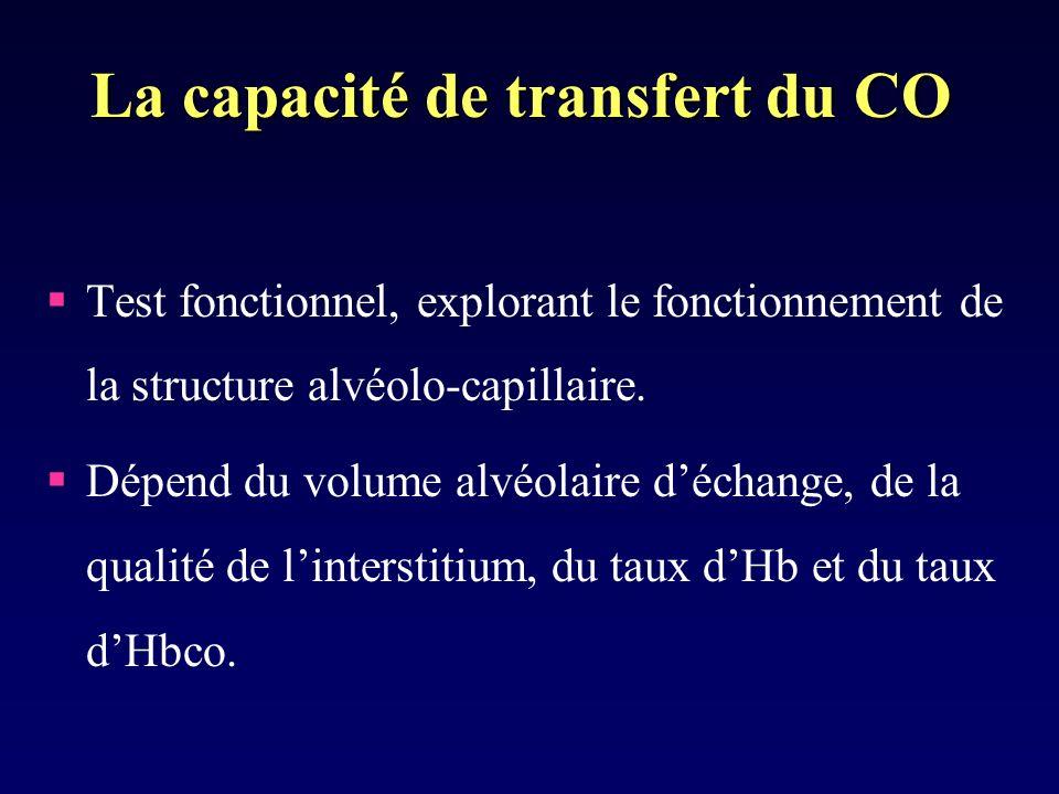 La capacité de transfert du CO Test fonctionnel, explorant le fonctionnement de la structure alvéolo-capillaire.