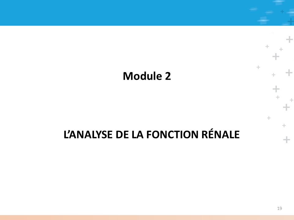Module 2 LANALYSE DE LA FONCTION RÉNALE 19