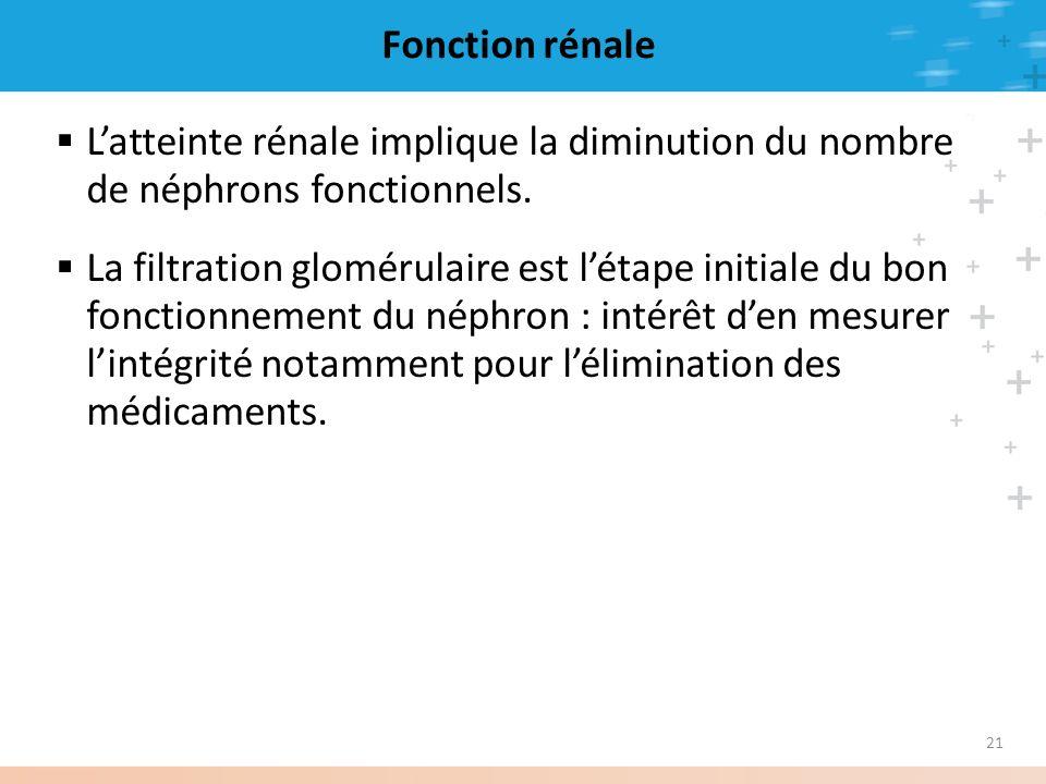 21 Fonction rénale Latteinte rénale implique la diminution du nombre de néphrons fonctionnels. La filtration glomérulaire est létape initiale du bon f