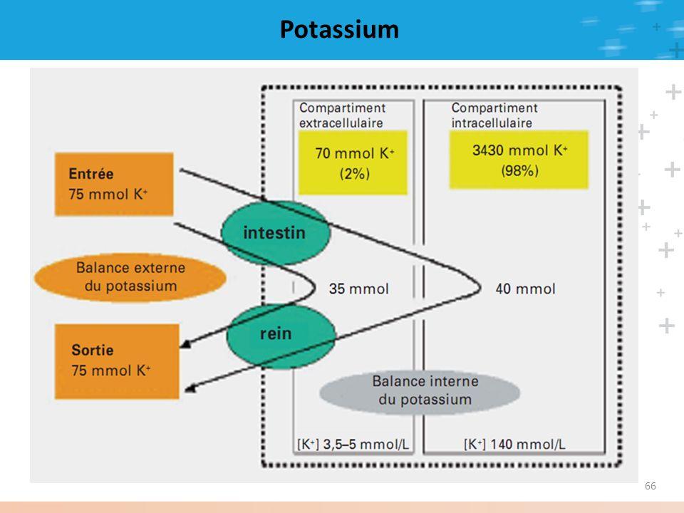 66 Potassium
