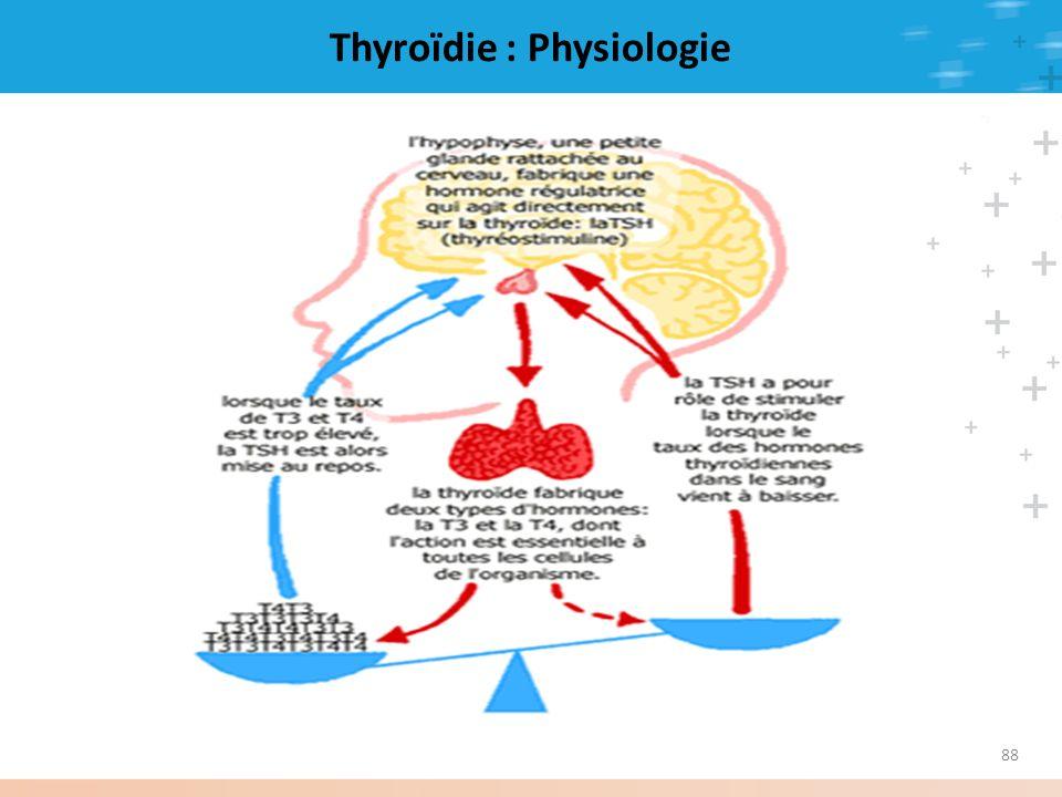 88 Thyroïdie : Physiologie