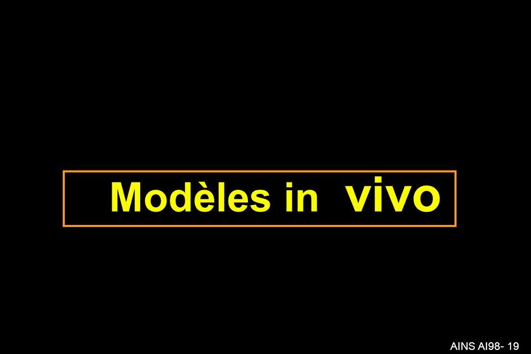 AINS AI98- 19 Modèles in vivo