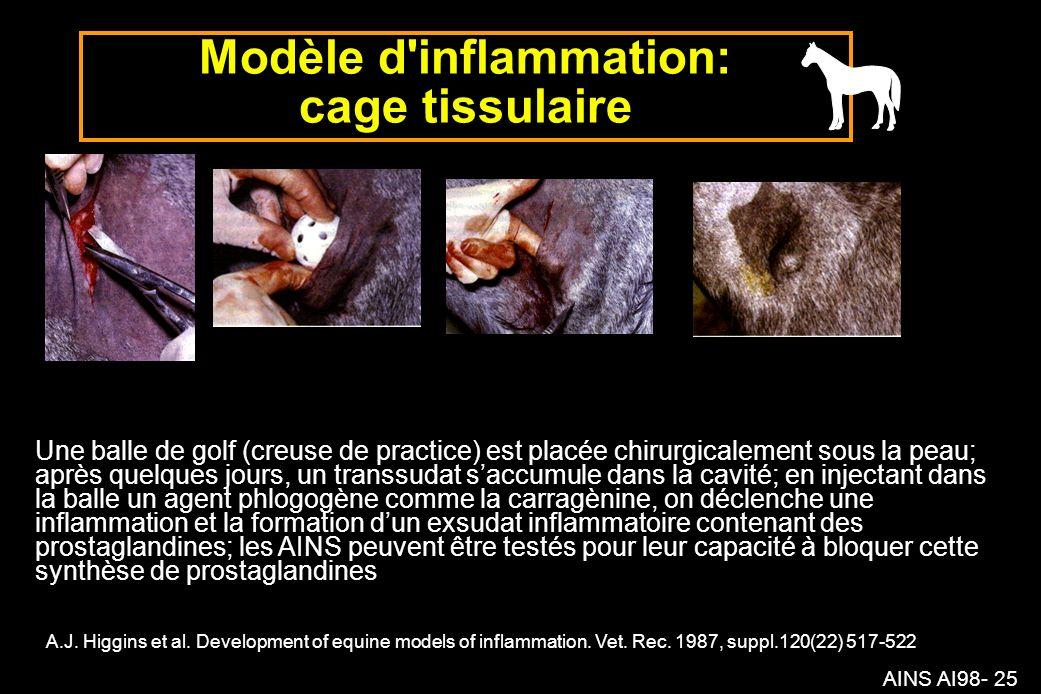 AINS AI98- 25 Modèle d inflammation: cage tissulaire A.J.