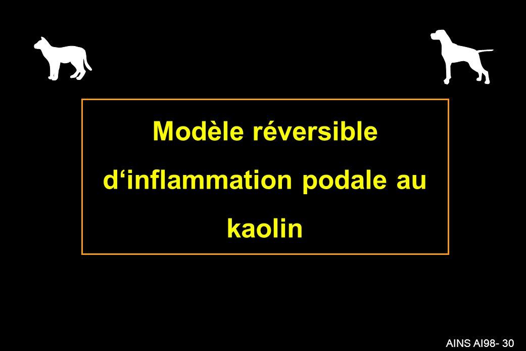 AINS AI98- 30 Modèle réversible dinflammation podale au kaolin
