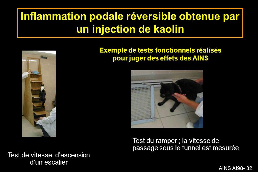 AINS AI98- 32 Inflammation podale réversible obtenue par un injection de kaolin Exemple de tests fonctionnels réalisés pour juger des effets des AINS Test de vitesse dascension dun escalier Test du ramper ; la vitesse de passage sous le tunnel est mesurée