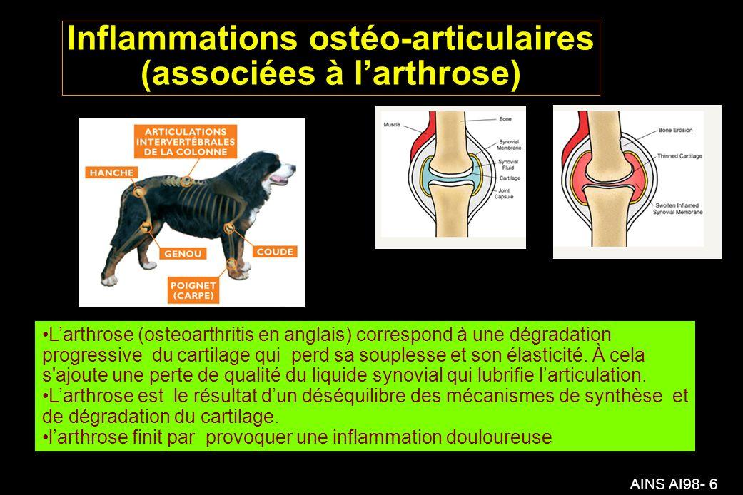 AINS AI98- 6 Inflammations ostéo-articulaires (associées à larthrose) Larthrose (osteoarthritis en anglais) correspond à une dégradation progressive du cartilage qui perd sa souplesse et son élasticité.