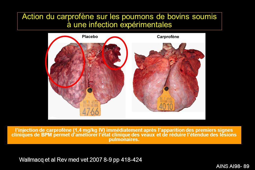 AINS AI98- 89 Action du carprofène sur les poumons de bovins soumis à une infection expérimentales Wallmacq et al Rev med vet 2007 8-9 pp 418-424 linjection de carprofène (1,4 mg/kg IV) immédiatement après lapparition des premiers signes cliniques de BPM permet daméliorer létat clinique des veaux et de réduire létendue des lésions pulmonaires.