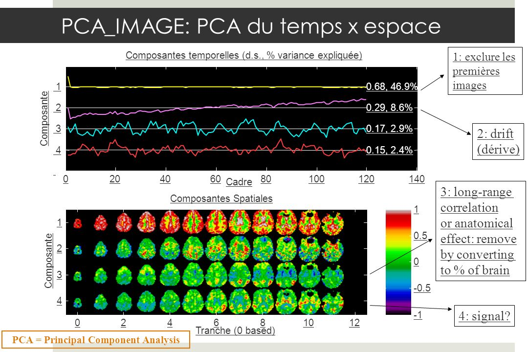 1: exclure les premières images 2: drift (dérive) 3: long-range correlation or anatomical effect: remove by converting to % of brain 4: signal? PCA_IM