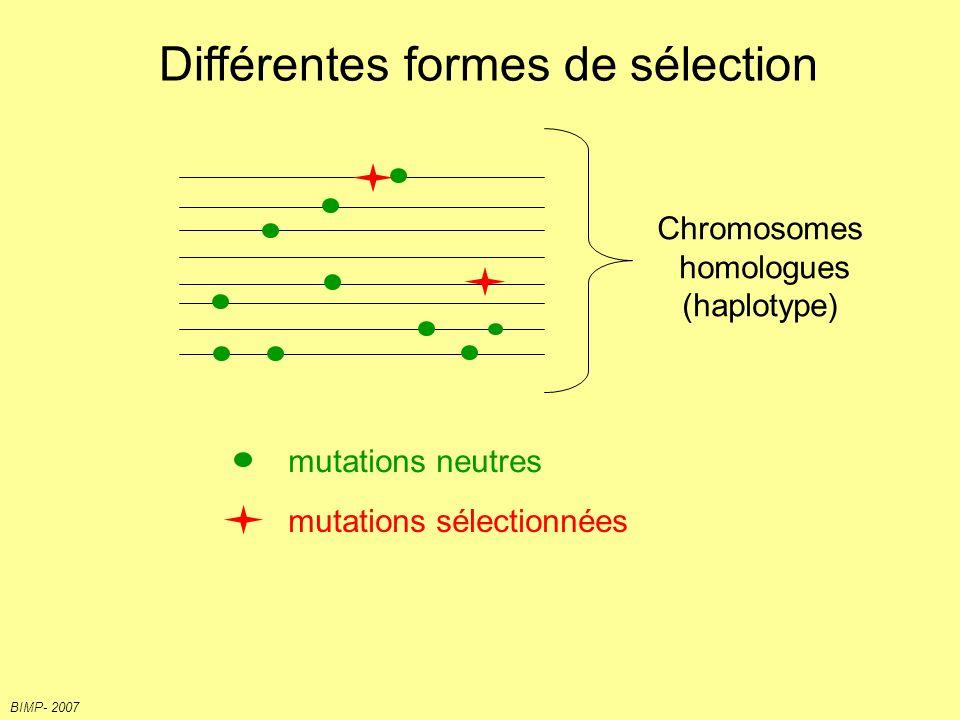 Séquences codantes & signatures à long terme de la sélection 4 = 64 codons pour 21 informations différentes 3