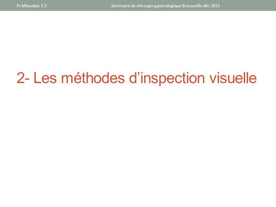 2- Les méthodes dinspection visuelle Séminaire de chirurgie gynécologique Brazzaville déc 2011Pr Mboudou E.T.