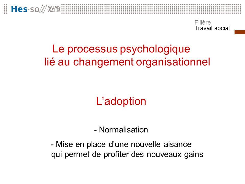 Filière Travail social Le processus psychologique lié au changement organisationnel Ladoption - Normalisation - Mise en place dune nouvelle aisance qu