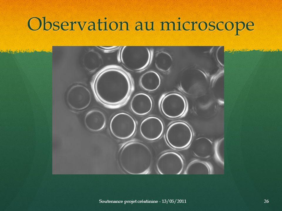 Observation au microscope Soutenance projet créatinine - 13/05/201126