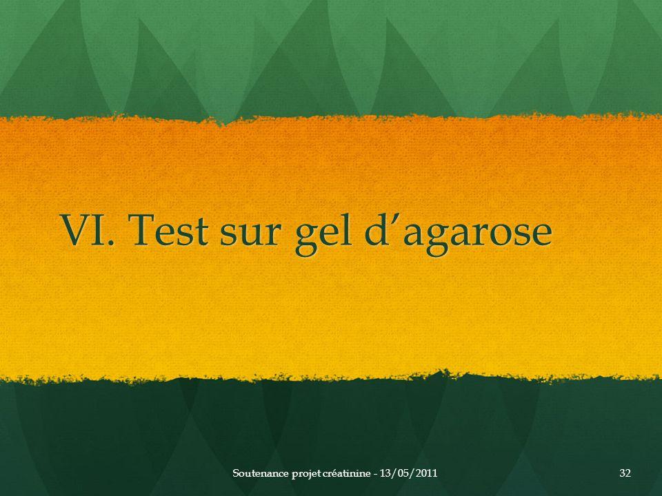 VI. Test sur gel dagarose Soutenance projet créatinine - 13/05/201132